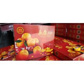 Chines New Year Orange SIZE XXL 16'S 礼盒装